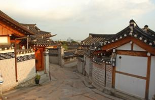 Guided visit of the Bukchon hanok villages and the rice cake museum