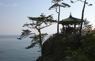 Guided excursion to Mount Seorak National Park - leaving from Seoul