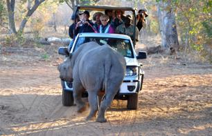 Half-Day Safari in The African Bush – Departing from Victoria Falls