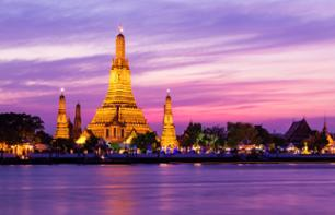 Cruise on the Chao Phraya River and Private Guided Walking Tour of Bangkok