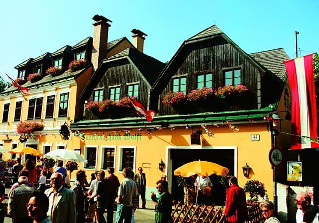 Visite de Vienne de nuit et spectacle traditionnel-départ/retour hôtel image 2