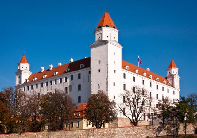 Excursion en bus à Bratislava depuis Vienne- départ de votre hôtel image 5