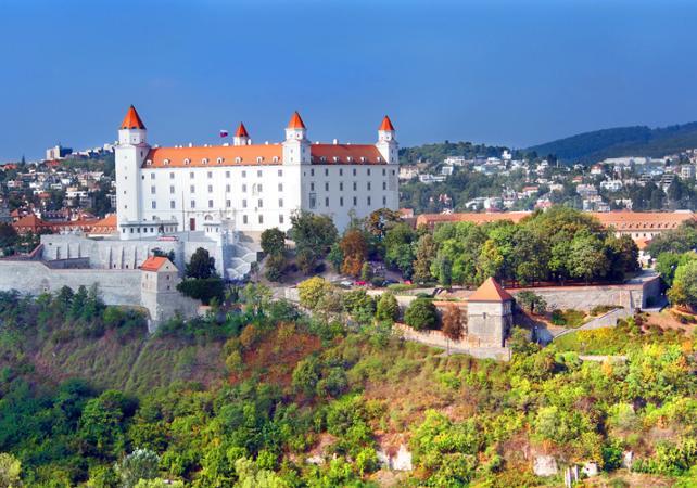 Excursion en bus à Bratislava depuis Vienne- départ de votre hôtel image 4