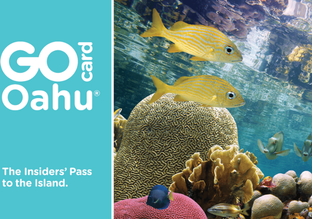 Oahu Pass – Accès à + de 35 musées, tours et attractions - Valable 1, 2, 3, 5 ou 7 jours - Hawaii (Oahu, Maui, Big Island...) -