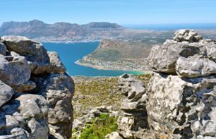 Hike to the Summit of Table Mountain