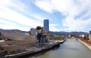 Guided tour of Bilbao and ticket to the Guggenheim Museum