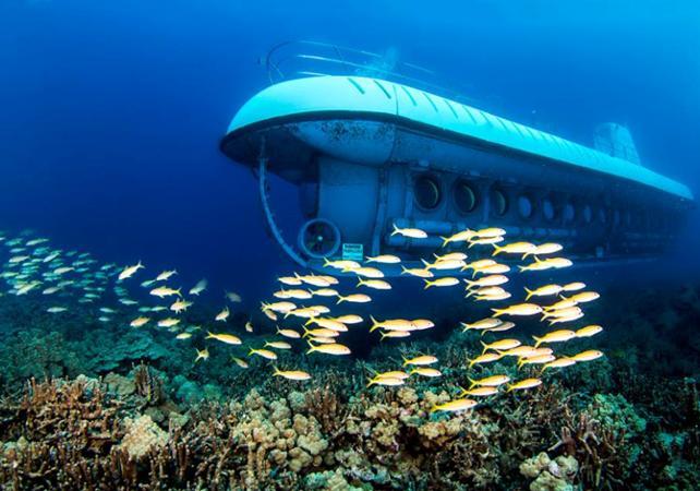 Croisière à 30 mètres de profondeur à bord du mini sous-marin