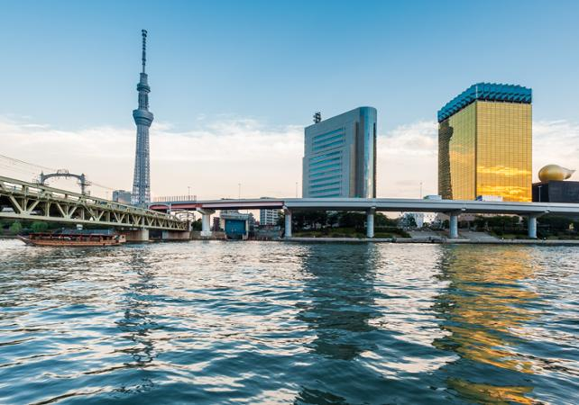 Tokyo en un jour – Citytour en bus, visite de la Tour de Tokyo, déjeuner traditionnel, cérémonie du thé et croisière - Tokyo -