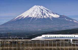 Day excursion to Mount Fuji departing from Tokyo - return by Shinkansen