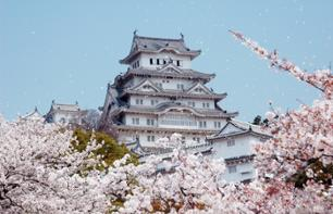 Excursion to the Himeji Castle – Departing from Osaka