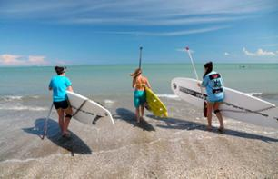 Stand-up paddle class in the sea
