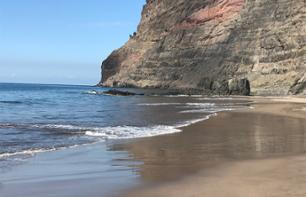 Dolphin Watching Cruise with View of the Gui-Gui Beach - Gran Canaria