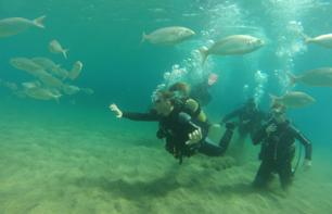 Diving Lessons in Lanzarote