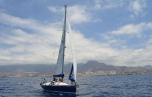 Private sailboat cruise with snacks and drinks included - Tenerife