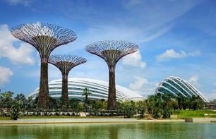 Billets - Dômes du parc Gardens by the bay - transport inclus - Singapour
