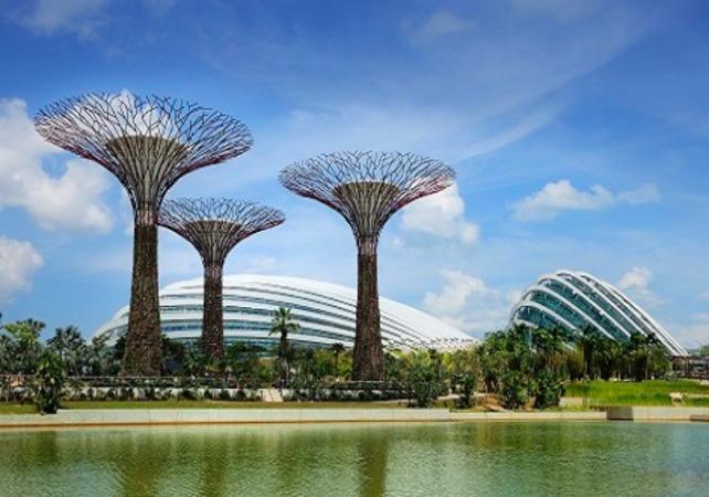 Visite du parc Gardens by the bay - Singapour -