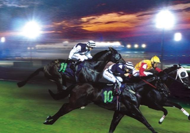 Courses de chevaux à Singapour - Singapour -