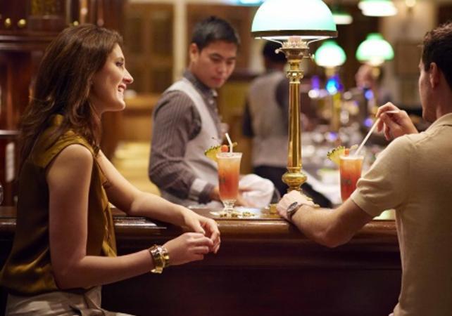 Visite guidée de Singapour by night et dégustation de Singapore Sling - Singapour -