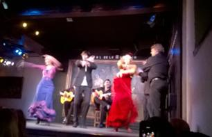 Spectacle de Flamenco à Madrid (Diner / Transfert en option)