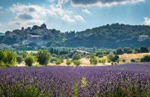 Luberon Villages and Lavender Fields