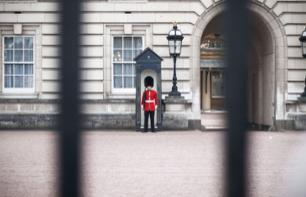 The Changing of the Guard in London with a local guide