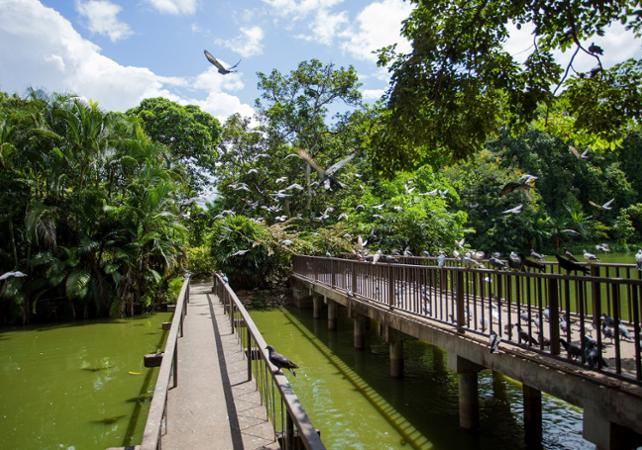 Photo Visite guidée de Chiang Mai et croisière sur la rivière Mae Ping