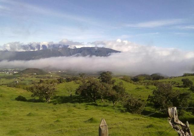 Photo Excursion avec une locale au volcan du Piton de la Fournaise et dans le Sud sauvage