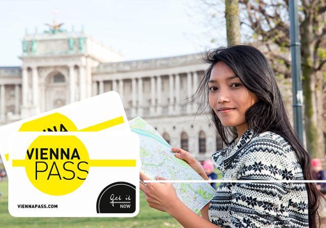 Pass Vienne : 60 monuments et attractions inclus - accès coupe-file image 1