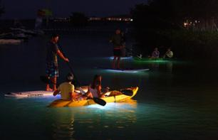 Guided Night Tour by Kayak or Standup Paddleboard off the Coast of Vancouver