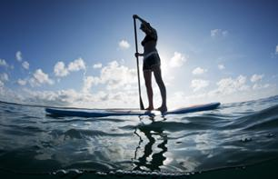 Guided Standup Paddleboard Tour in Vancouver