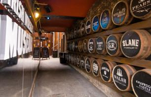 Guided Tour of the Irish Whiskey Museum in Dublin