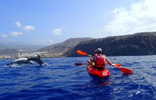 Kayaking with the dolphins & swimming with the turtles - Tenerife