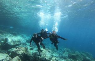 Introduction to Diving - Tenerife