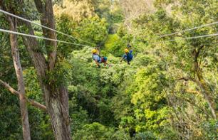 Treetop Adventure Course in the Kohala region (North of Big Island) - Hawaii
