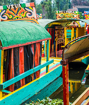 Xochimilco Floating Gardens Cruise